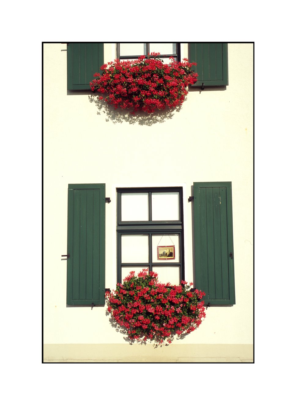 Blumen am Fenster, Grieth